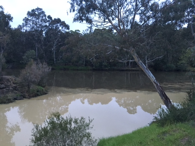 confluence of Merri and Yarra mid-May 2018
