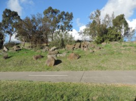 Merri Trail passes rocks and native shrubs at Lakeside College site
