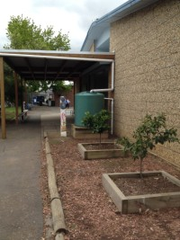 Small tank to water surrounding gardens at Thomastown East Primary School