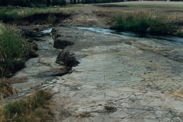 Vehicle track crossing dipping Melbourne Formation beds at Lower Edgars Creek, North Coburg, Victoria, Australia