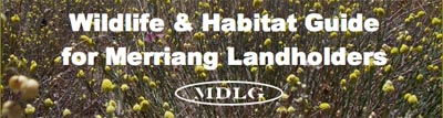 Wildlife and Habitat Guide for Merriang Landholders