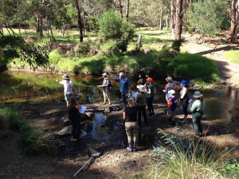 Waterbug participants learning about safe sampling techniques on the Darebin Creek