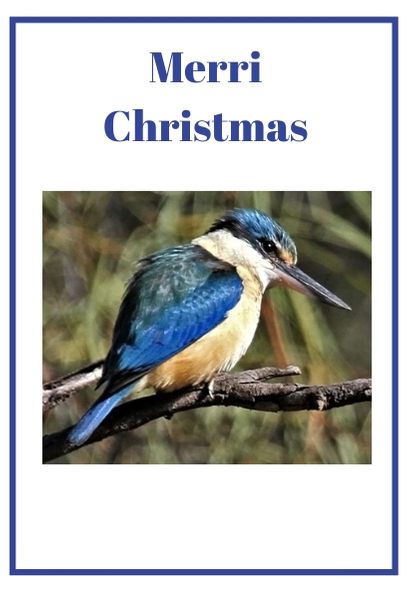 Merri Christmas card 2019