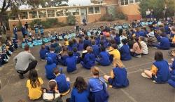 Newlands PS 2019 BlBandedBee assembly
