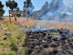 St Albans Grassland burn