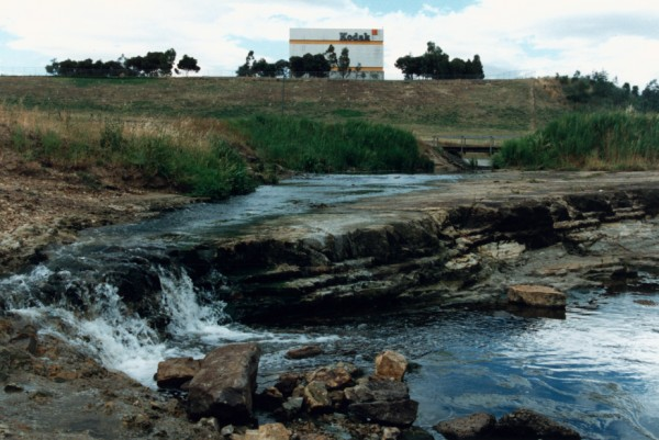 Dipping Melbourne Formation forming a waterfall at Lower Edgars Creek, Coburg North, Victoria, Australia