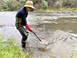 pesticide detectives sampling